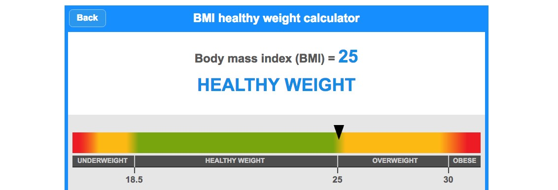 BMI - Reaching a healthy BMI with Slimming World