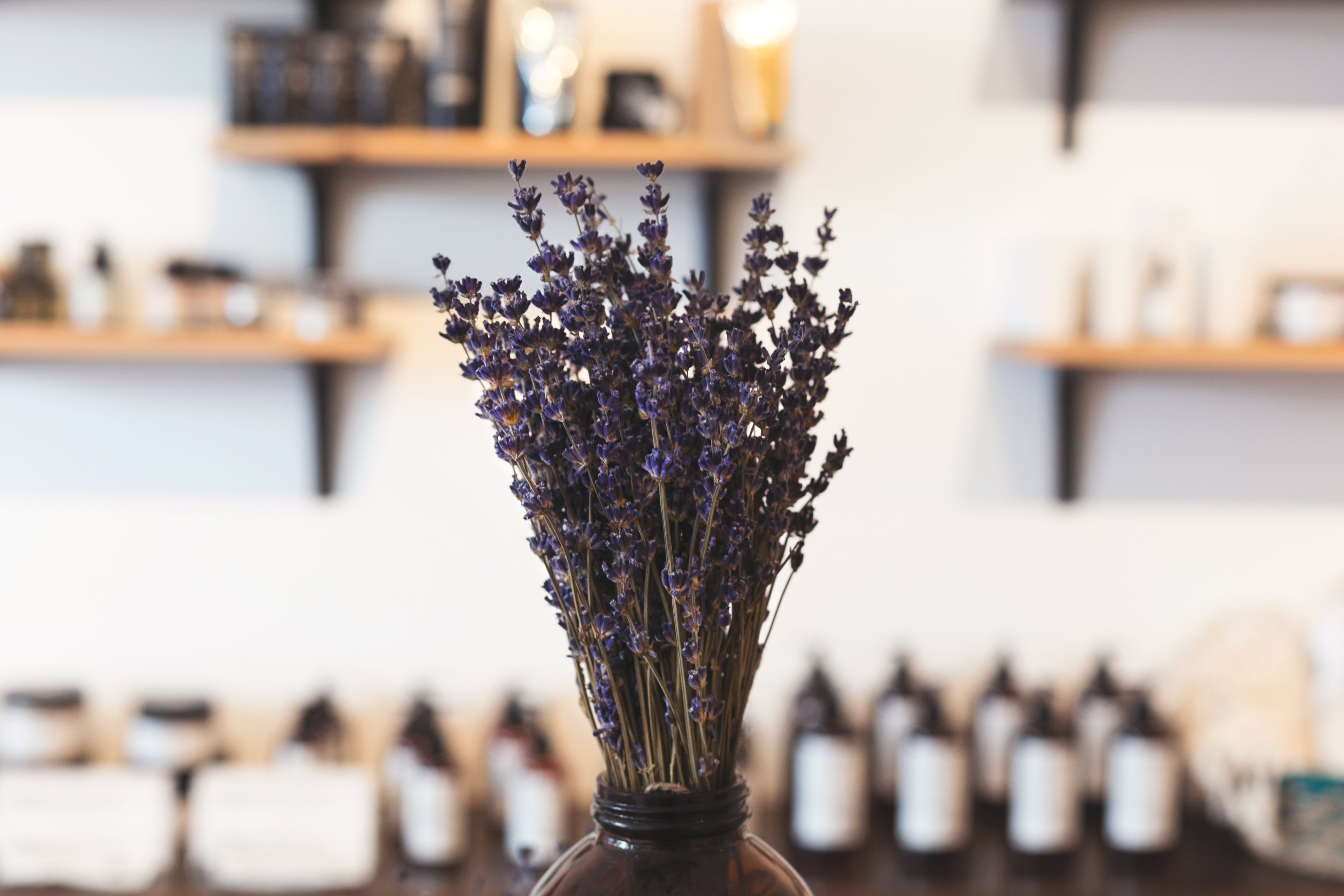 Top 5 Essential Oils for Dry Skin 1