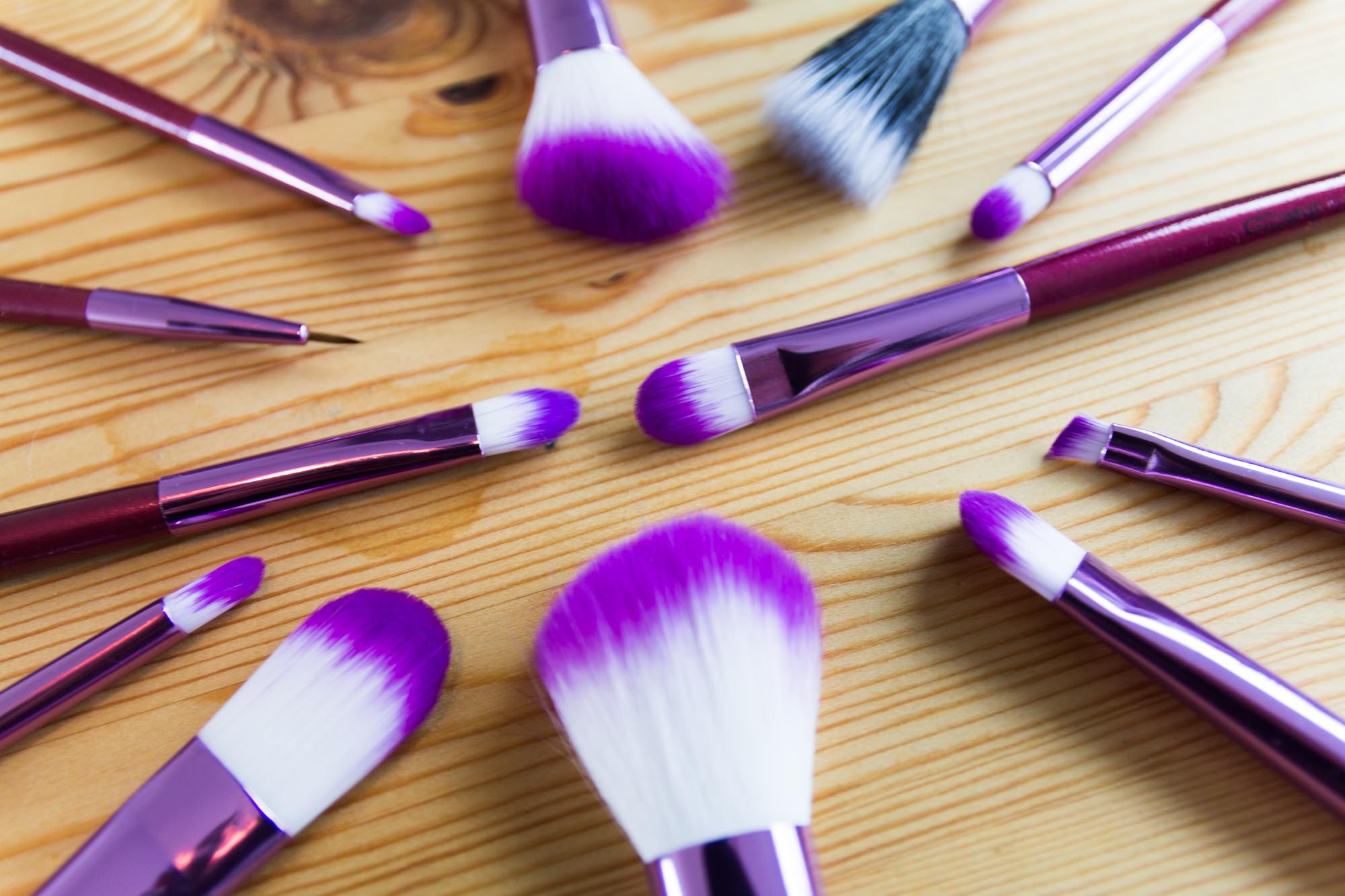 budget make up brush set