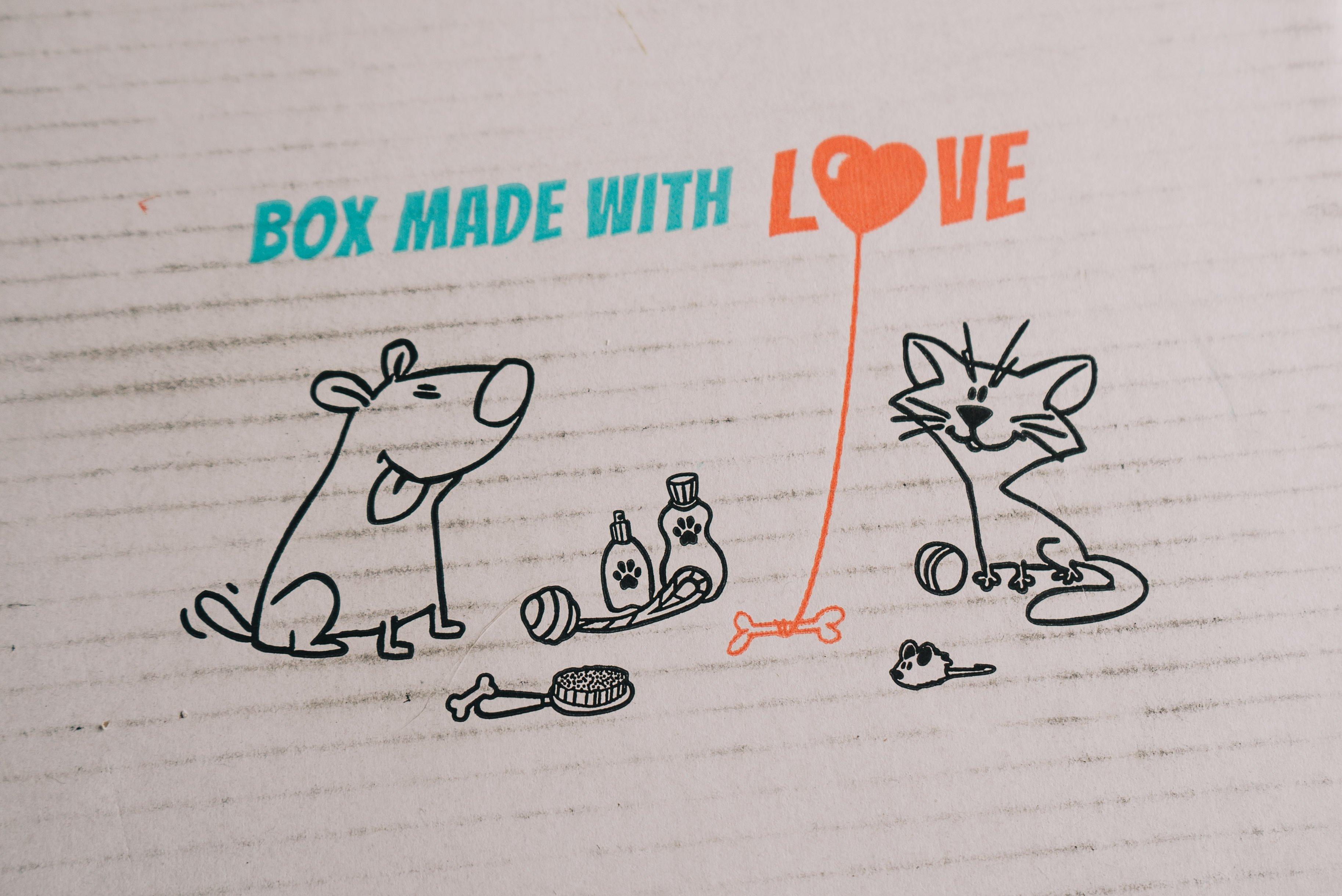 Millie Pawsome Box